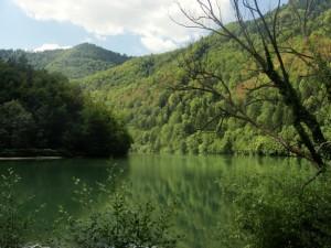 Dolina Drave